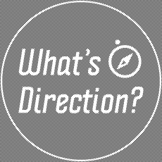 what_direction_i